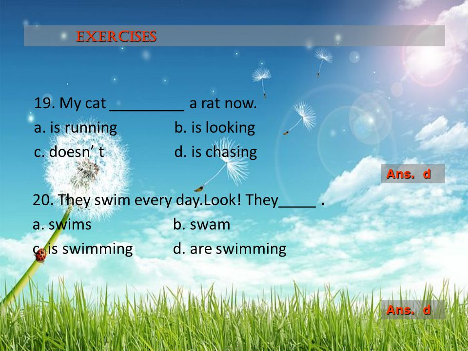 Exercises 19. My cat _________ a rat now. a. is running b. is looking c. doesn' t d. is chasing Ans. d.