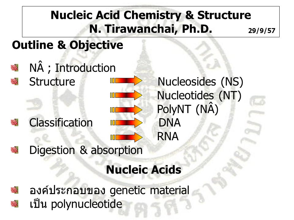 Nucleic Acid Chemistry & Structure