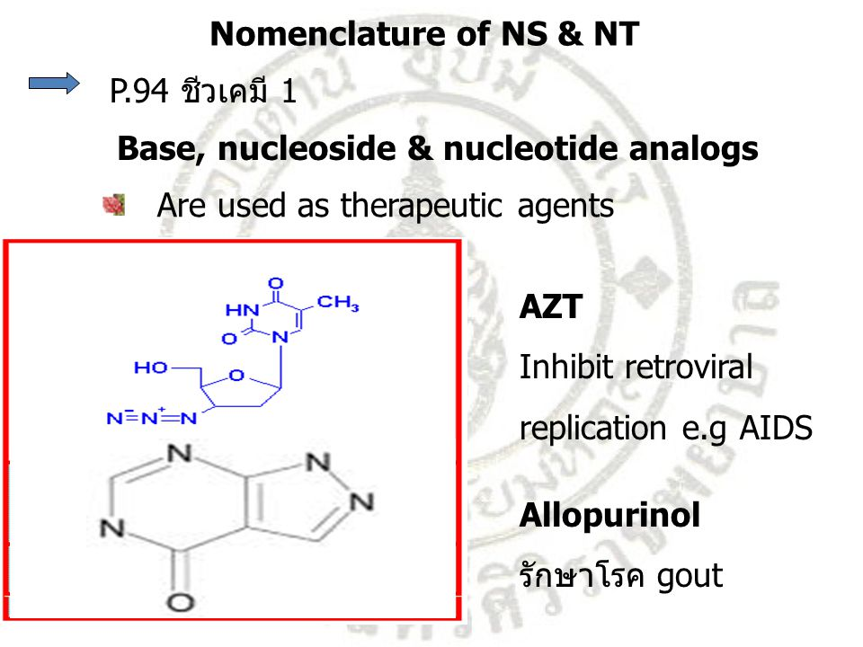 Nomenclature of NS & NT P.94 ชีวเคมี 1. Base, nucleoside & nucleotide analogs. Are used as therapeutic agents.