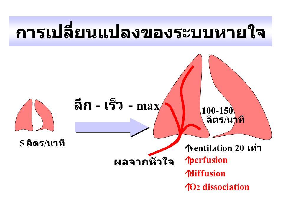 การเปลี่ยนแปลงของระบบหายใจ