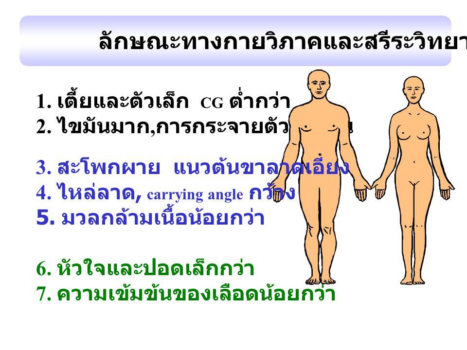 ลักษณะทางกายวิภาคและสรีระวิทยา