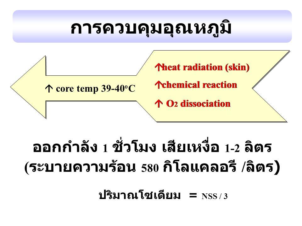 การควบคุมอุณหภูมิ ออกกำลัง 1 ชั่วโมง เสียเหงื่อ 1-2 ลิตร