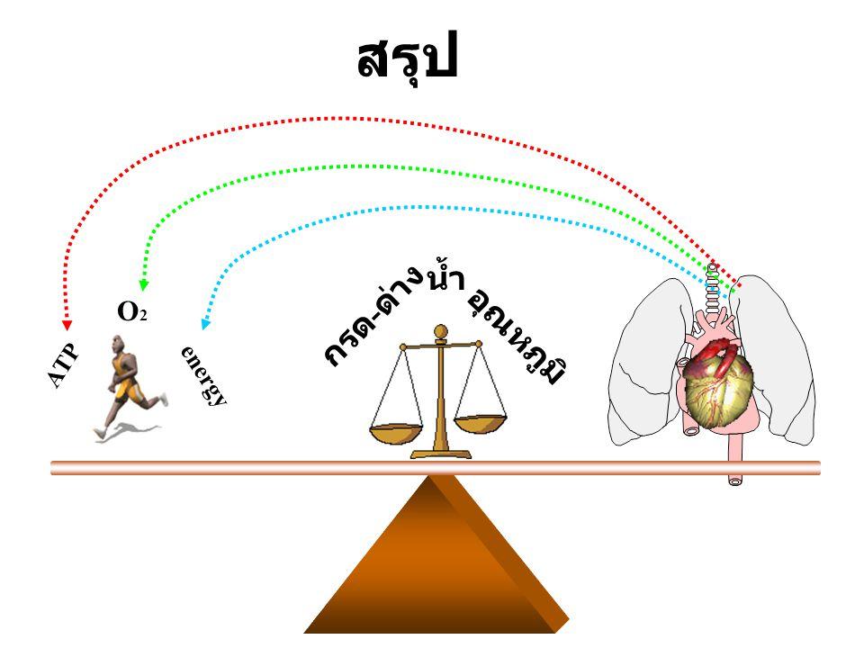 สรุป อุณหภูมิ กรด-ด่าง น้ำ ATP O2 energy