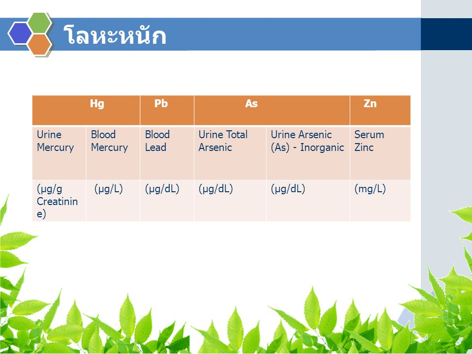 โลหะหนัก Hg Pb As Zn Urine Mercury Blood Mercury Blood Lead