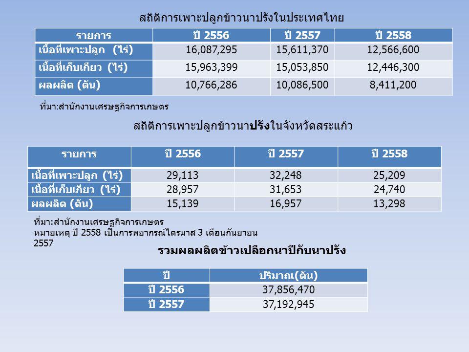 สถิติการเพาะปลูกข้าวนาปรังในประเทศไทย