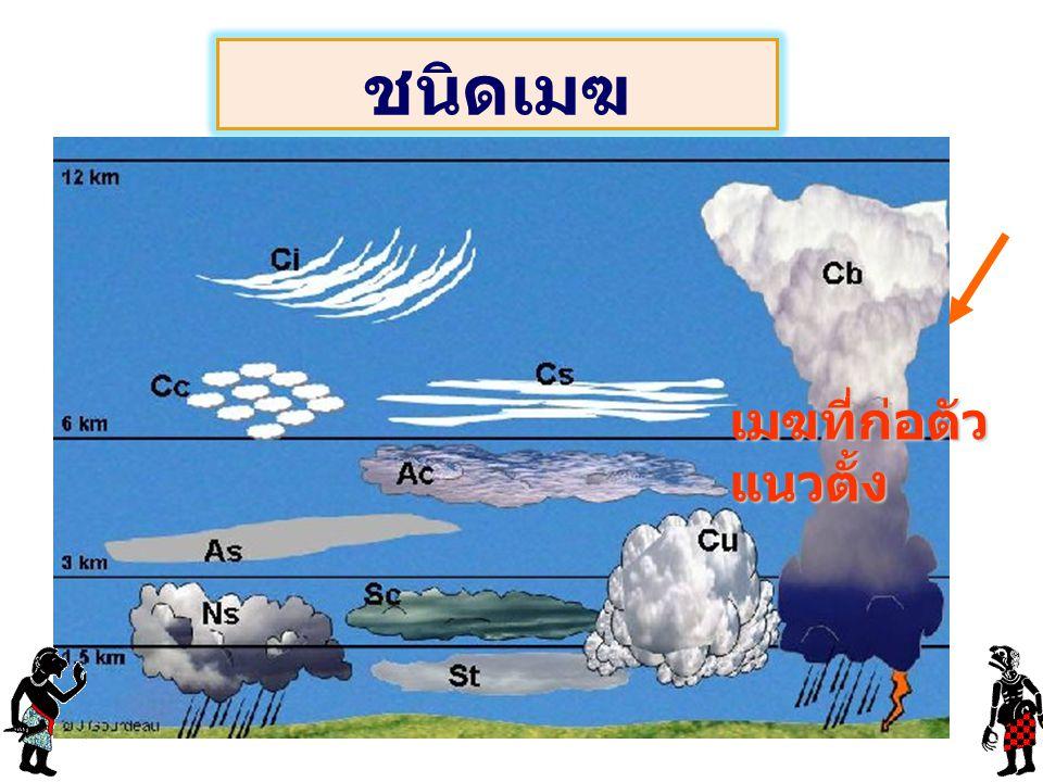 ชนิดเมฆ เมฆที่ก่อตัวแนวตั้ง