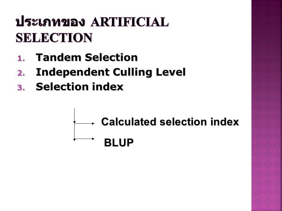 ประเภทของ Artificial selection