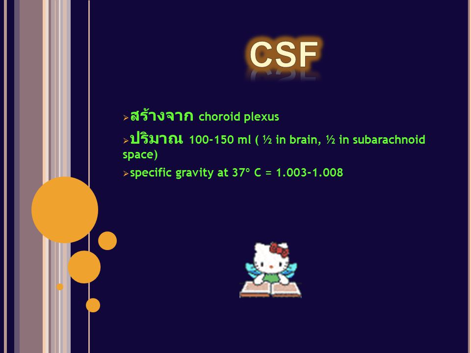 CSF สร้างจาก choroid plexus