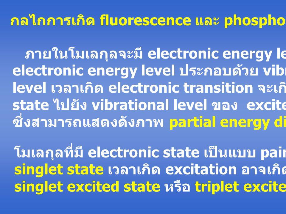 กลไกการเกิด fluorescence และ phosphorescence