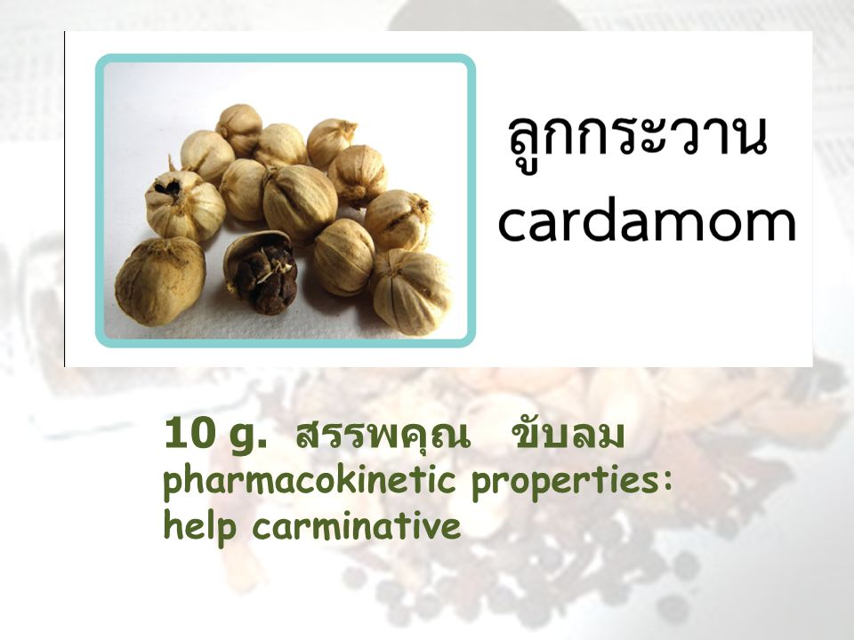 10 g. สรรพคุณ ขับลม pharmacokinetic properties: help carminative