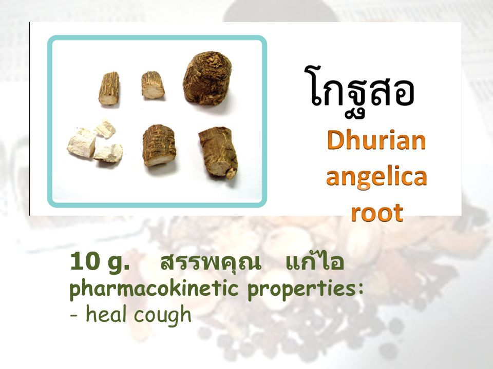 Dhurian angelica root 10 g. สรรพคุณ แก้ไอ pharmacokinetic properties: