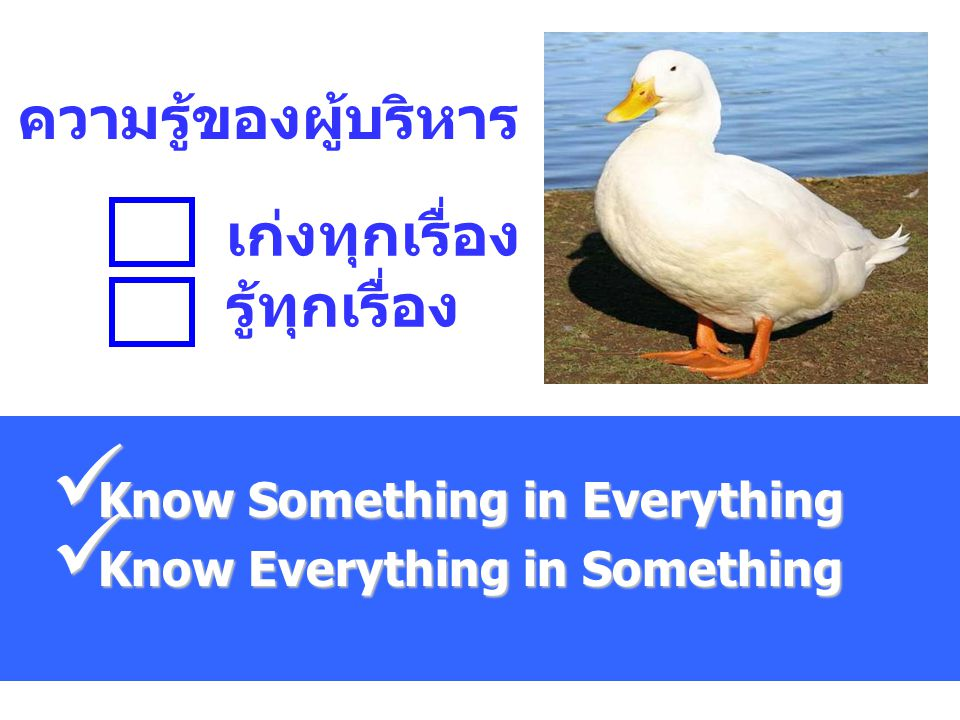 Know Something in Everything Know Everything in Something