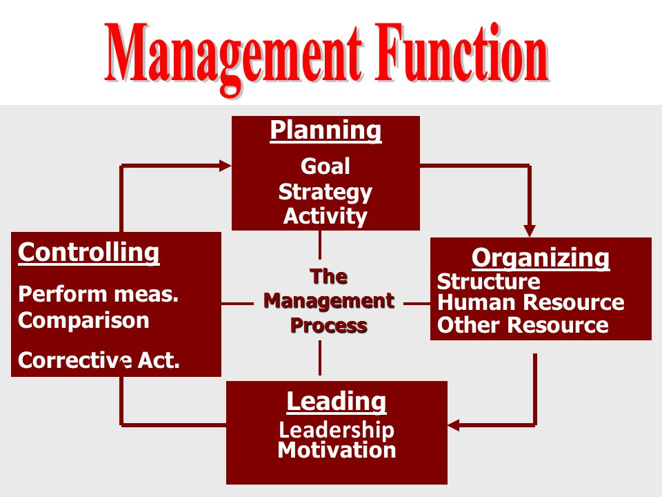 The Management Process