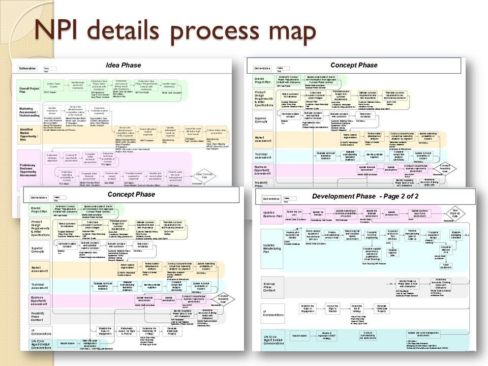NPI details process map