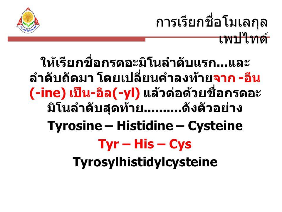 Tyrosine – Histidine – Cysteine Tyrosylhistidylcysteine