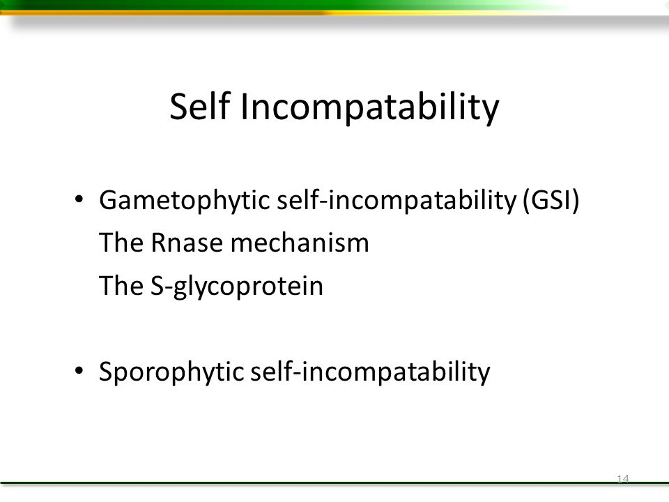 Self Incompatability Gametophytic self-incompatability (GSI)