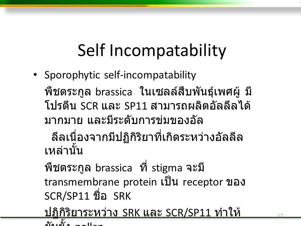 Self Incompatability Sporophytic self-incompatability