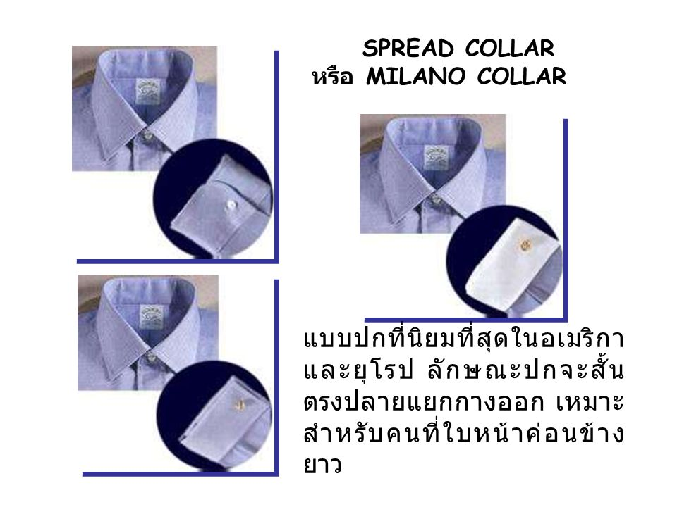 SPREAD COLLAR หรือ MILANO COLLAR.