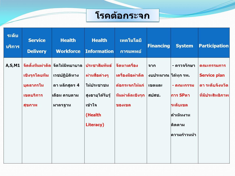 โรคต้อกระจก ระดับบริการ Service Delivery Health Workforce