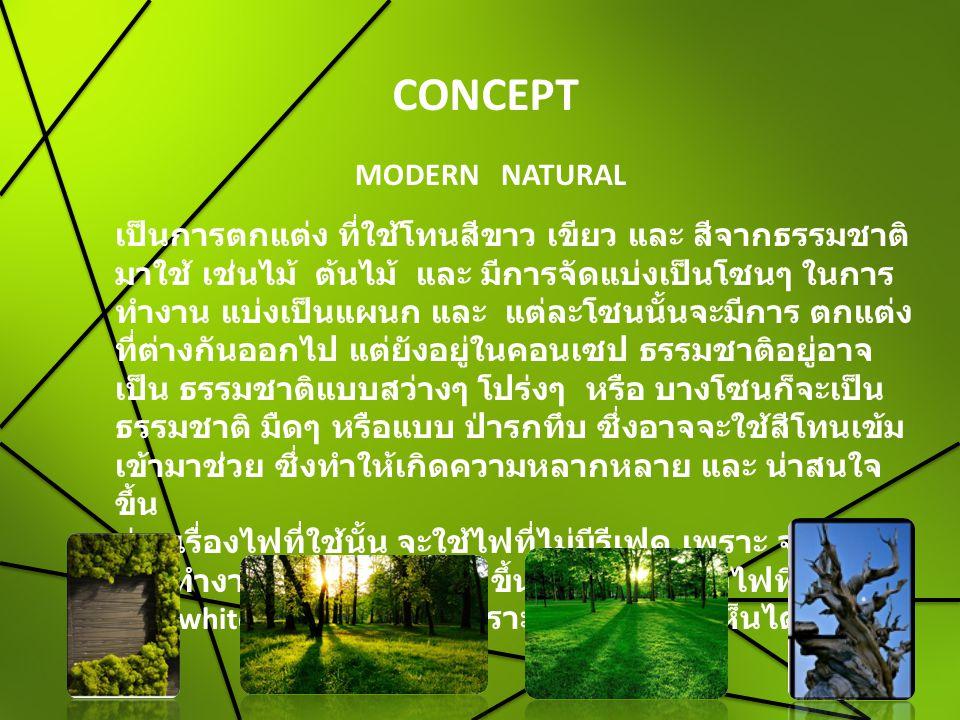 CONCEPT MODERN NATURAL