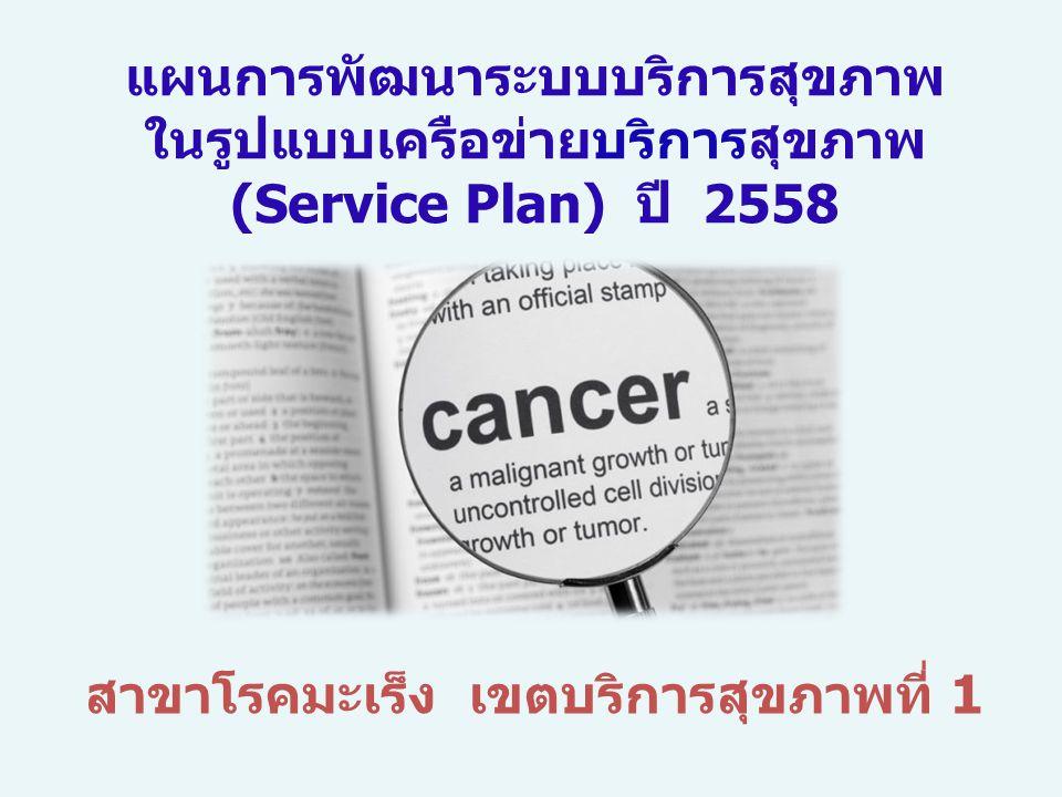 สาขาโรคมะเร็ง เขตบริการสุขภาพที่ 1