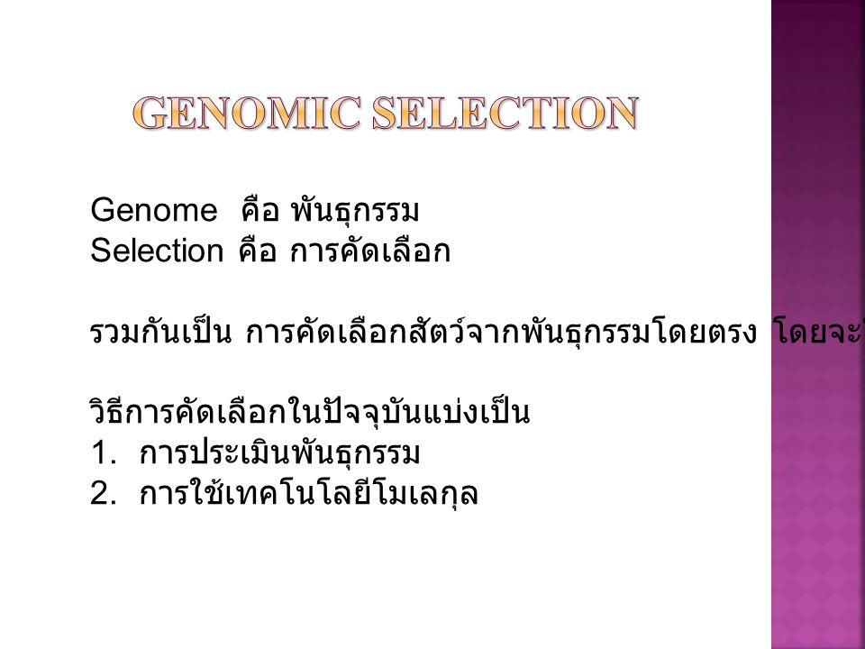 Genomic selection Genome คือ พันธุกรรม Selection คือ การคัดเลือก