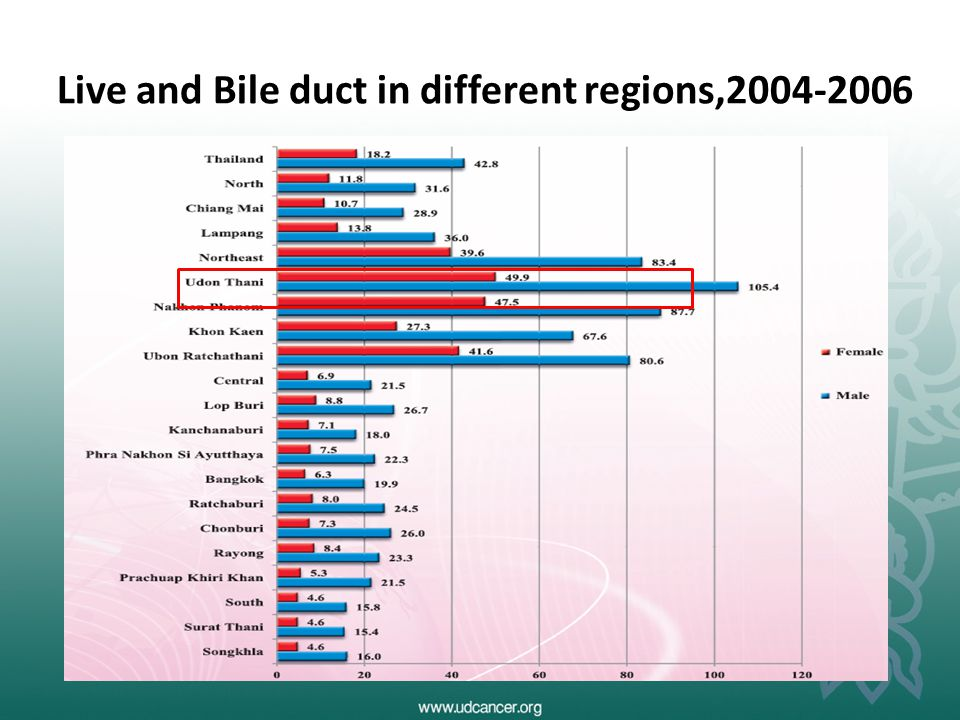 Live and Bile duct in different regions,2004-2006