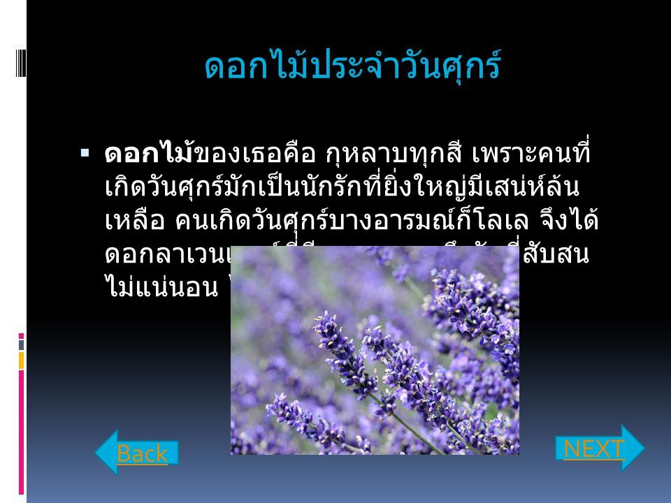 ดอกไม้ประจำวันศุกร์