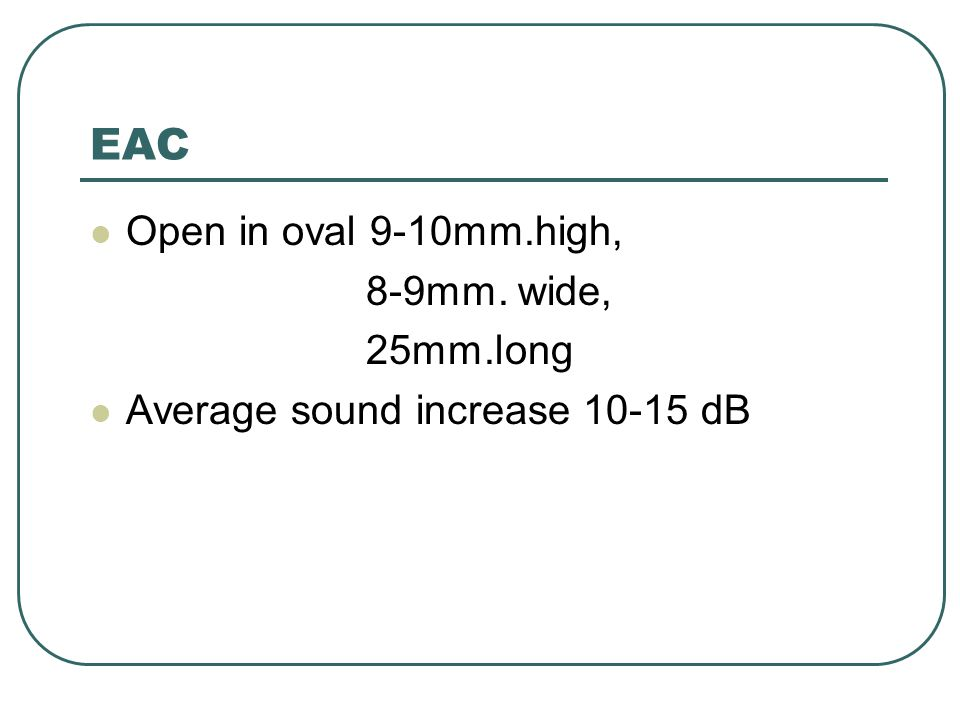 EAC Open in oval 9-10mm.high, 8-9mm. wide, 25mm.long