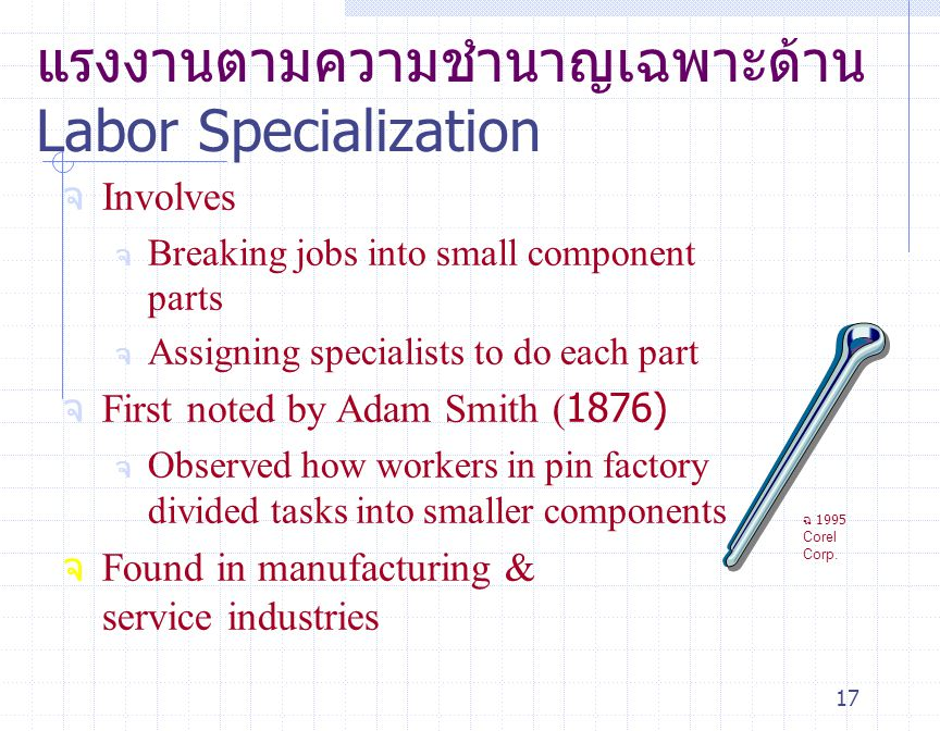 แรงงานตามความชำนาญเฉพาะด้าน Labor Specialization