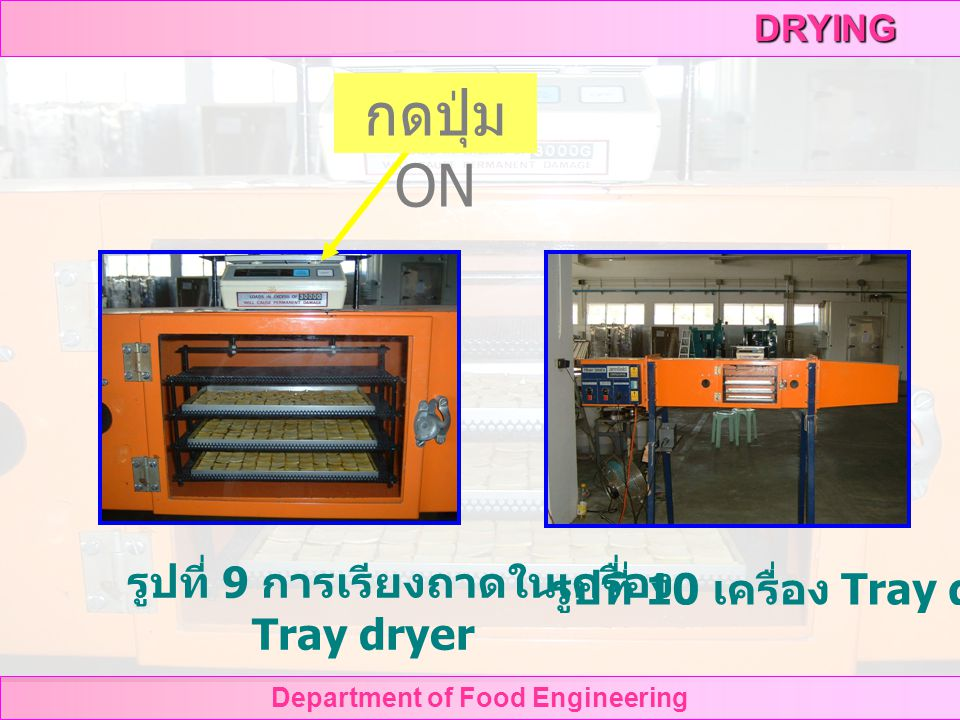 Department of Food Engineering