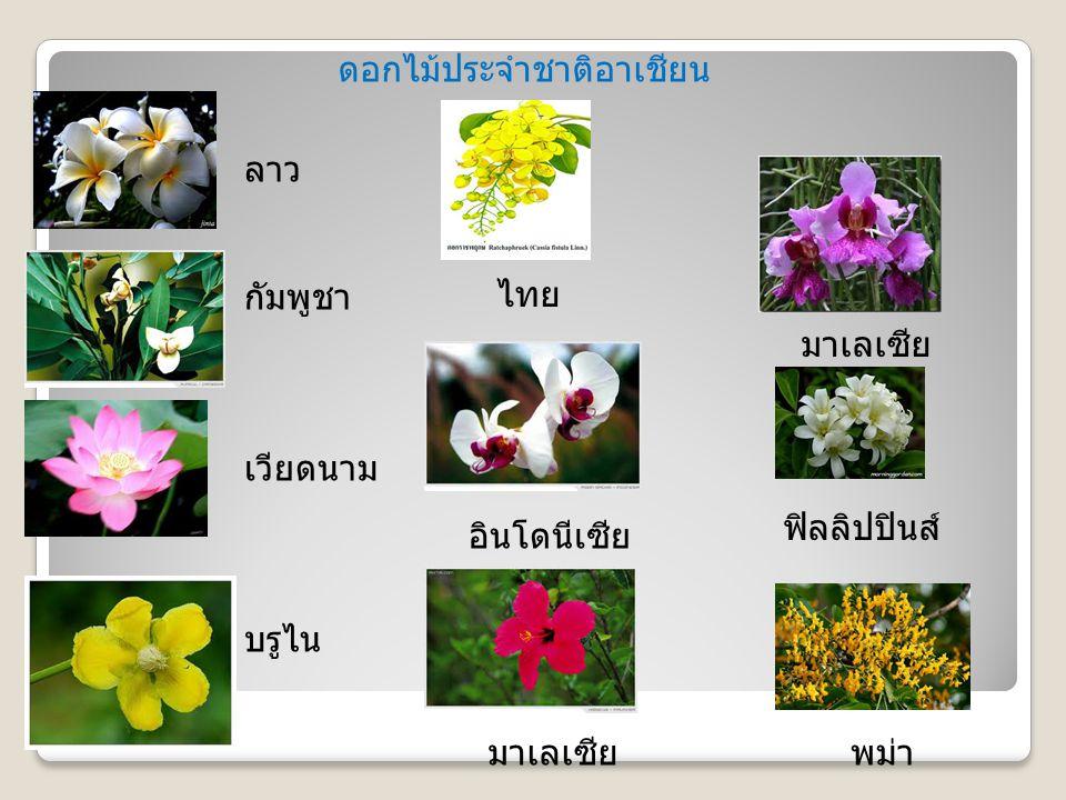 ดอกไม้ประจำชาติอาเชียน
