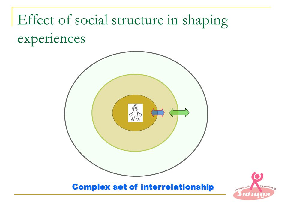 Effect of social structure in shaping experiences