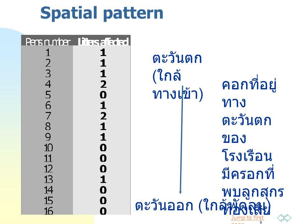 Spatial pattern ตะวันตก (ใกล้ทางเข้า)