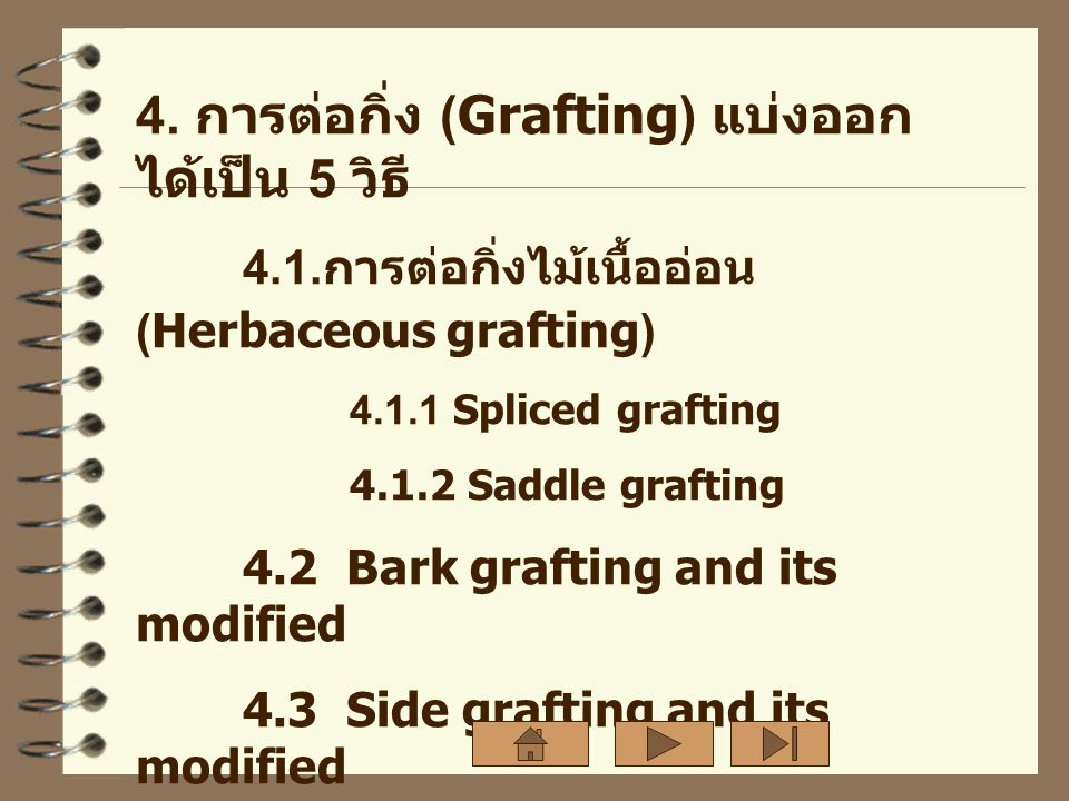 4. การต่อกิ่ง (Grafting) แบ่งออกได้เป็น 5 วิธี
