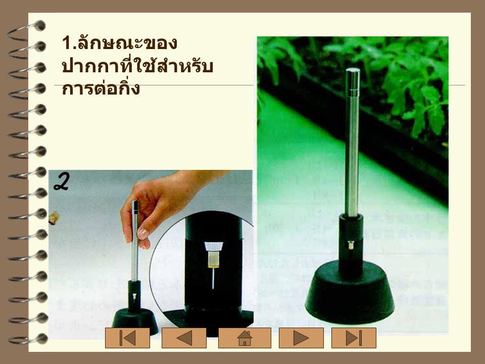 1.ลักษณะของปากกาที่ใช้สำหรับการต่อกิ่ง