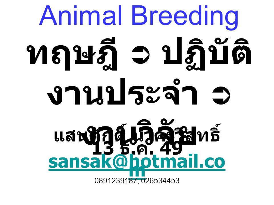 Animal Breeding ทฤษฎี  ปฏิบัติ งานประจำ  งานวิจัย