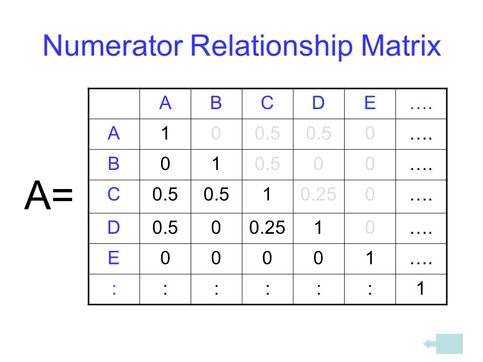 Numerator Relationship Matrix