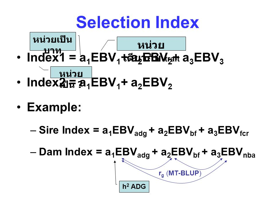 Selection Index Index1 = a1EBV1+ a2EBV2+ a3EBV3
