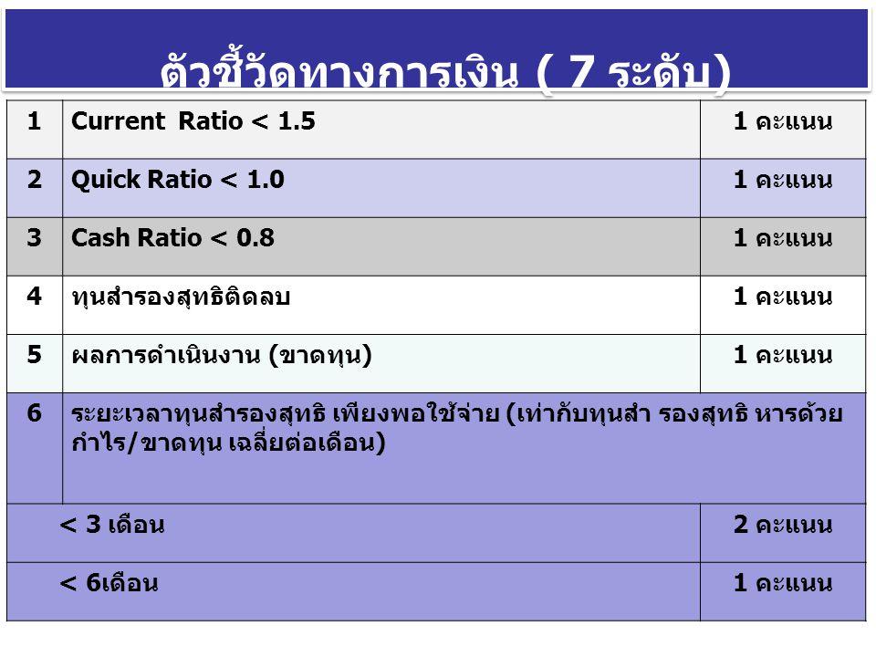 ตัวชี้วัดทางการเงิน ( 7 ระดับ)