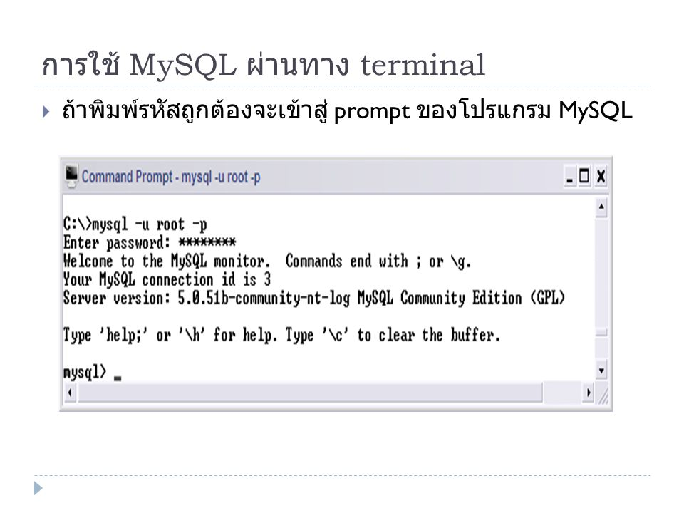 การใช้ MySQL ผ่านทาง terminal