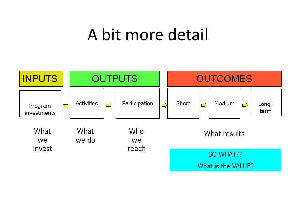 A bit more detail INPUTS OUTPUTS OUTCOMES What we invest What we do