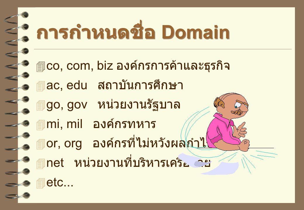 การกำหนดชื่อ Domain co, com, biz องค์กรการค้าและธุรกิจ
