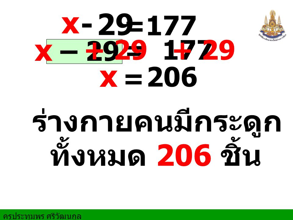 x - 29 x – 29 x ร่างกายคนมีกระดูก ทั้งหมด 206 ชิ้น = 177 + 29 = 177