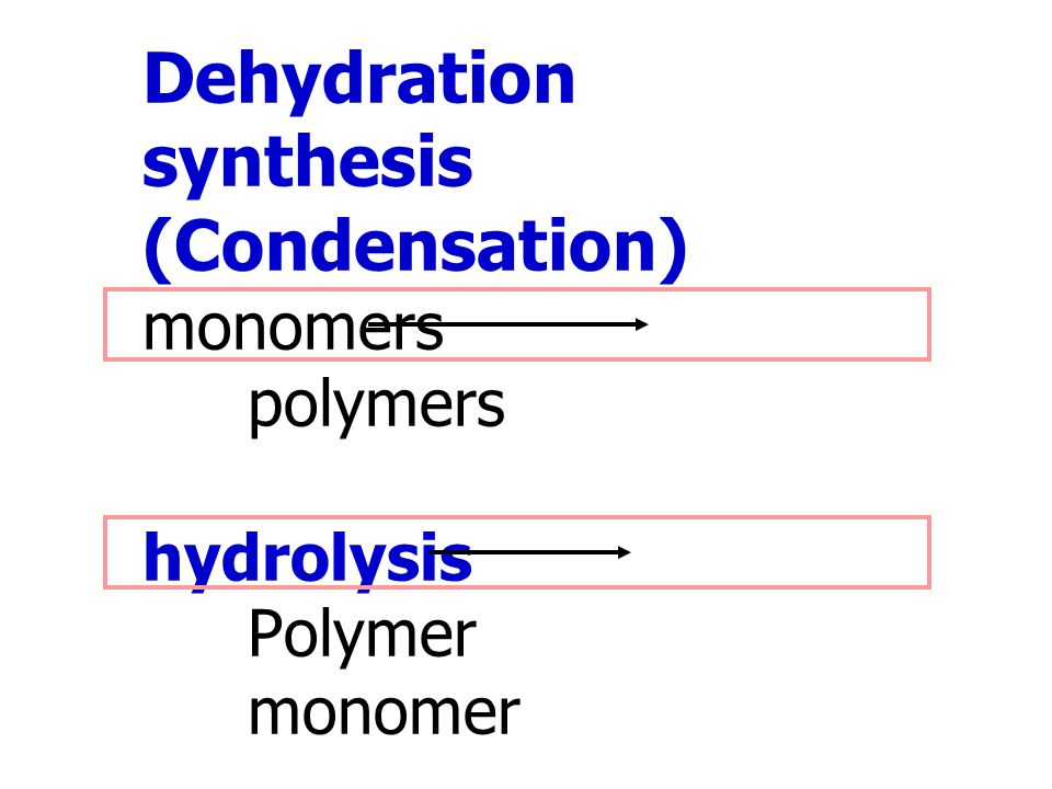 Dehydration synthesis (Condensation) monomers. polymers hydrolysis