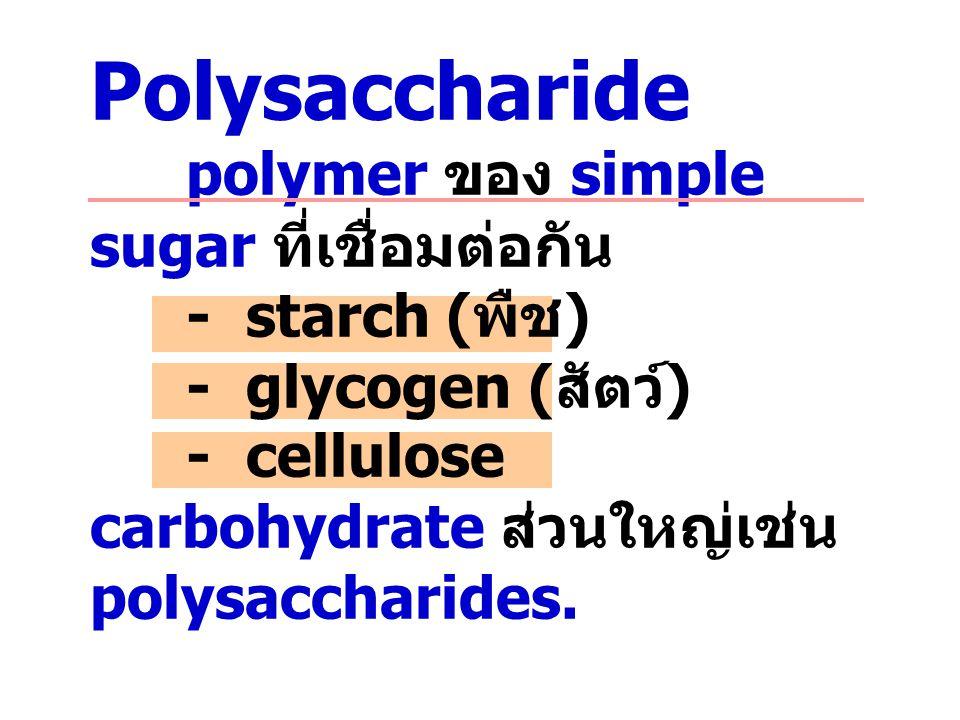 Polysaccharide. polymer ของ simple sugar ที่เชื่อมต่อกัน