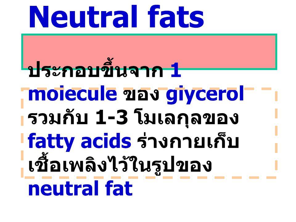 Neutral fats ประกอบขึ้นจาก 1 molecule ของ glycerol รวมกับ 1-3 โมเลกุลของ fatty acids ร่างกายเก็บเชื้อเพลิงไว้ในรูปของ neutral fat