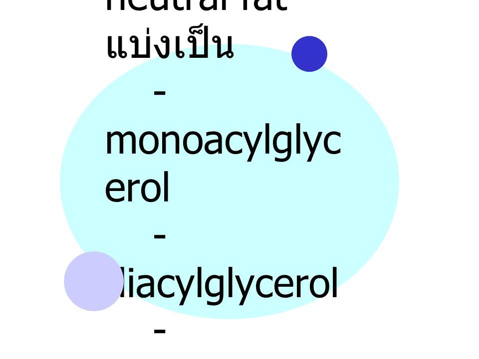 neutral fat แบ่งเป็น. - monoacylglycerol. - diacylglycerol