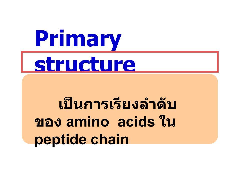 Primary structure เป็นการเรียงลำดับของ amino acids ใน peptide chain