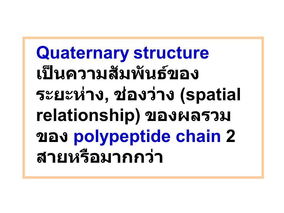Quaternary structure เป็นความสัมพันธ์ของระยะห่าง, ช่องว่าง (spatial relationship) ของผลรวมของ polypeptide chain 2 สายหรือมากกว่า